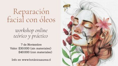 Workshop online Reparación con Óleos 5